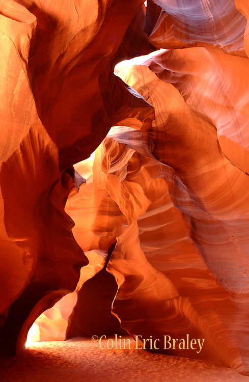The sandstone of Antelope Canyon, located on Navajo land near Page, Arizona, glows as the late morning sun aligns with the slot canyon's opening to the surface. The abstract features of the slot canyon are the result of millions of years of water erosion from flash floods.
