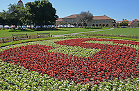 Parkland, grounds, Stanford University, California, 201305022307<br /> <br /> Copyright Image from Victor Patterson, 54 Dorchester Park, Belfast, UK, BT9 6RJ<br /> <br /> Tel: +44 28 9066 1296<br /> Mob: +44 7802 353836<br /> Voicemail +44 20 8816 7153<br /> Skype: victorpattersonbelfast<br /> Email: victorpatterson@me.com<br /> Email: victorpatterson@ireland.com (back-up)<br /> <br /> IMPORTANT: If you wish to use this image or any other of my images please go to www.victorpatterson.com and click on the Terms & Conditions. Then contact me by email or phone with the reference number(s) of the image(s) concerned.