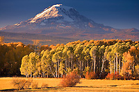 Looking at Mt, Adams across Conboy Lake National Wildlife Refuge and ranches near Glenwood in the Cascade Mountain Range, WA, USA. autumn