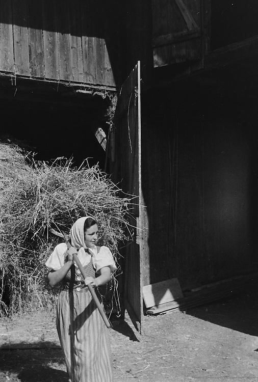 Farmer in Barn, Molln, Austria, 1935