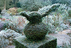Yew topiary in  winter at Upper Mill Cottage. Design: David and Mavis Seeney