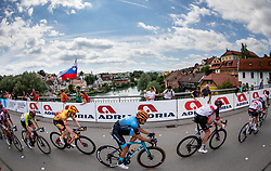 Tadej POGACAR of UAE TEAM EMIRATES, Daniel HOELGAARD of UNO - X PRO CYCLING TEAM, James SHAW of RIBBLE WELDTITE PRO, Diego ULISSI of UAE TEAM EMIRATES during the 5th Stage of 27th Tour of Slovenia 2021 cycling race between Ljubljana and Novo mesto (175,3 km), on June 13, 2021 in Slovenia. Photo by Vid Ponikvar / Sportida