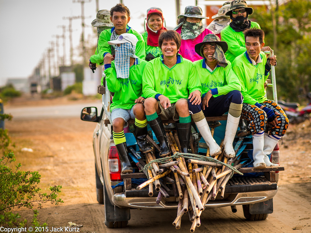 09 MARCH 2015 - NA KHOK, SAMUT SAKHON, THAILAND: Salt farm workers in the back of a pickup truck in Samut Sakhon, Thailand. The coastal provinces of Samut Sakhon and Samut Songkhram, about 60 miles from Bangkok, are the center of Thailand's sea salt industry. Salt farmers harvest salt from the waters of the Gulf of Siam by flooding fields and then letting them dry through evaporation, leaving a crust of salt behind. Salt is harvested through dry season, usually February to April. The 2014 salt harvest went well into May because the dry season lasted longer than normal. Last year's harvest resulted in a surplus of salt, driving prices down. Some warehouses are still storing salt from last year. It's been very dry so far this year and the 2015 harvest is running ahead of last year's bumper crop. One salt farmer said prices are down about 15 percent from last year.    PHOTO BY JACK KURTZ