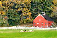 Farm near Newfane Vermont USA