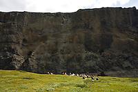 Göngufólk á vegum Augnabliks í Haframhvammagljúfrum. Jökulsá á Brú og Hafrahvammaglúfur. Gljúfrin eru einnig nefnd Dimmugljúfur. Þetta er á áhrifasvæði virkjanaframkvæmda Kárahnjúkavirkjunar. Við myndun Hálslóns var áin stífluð fyrir ofan gljúfrin og rennslið um þau hefur því stöðvast að mestu leyti. Aðeins rennur yfirfallsvatn um þau í dag, mest síðsumars.