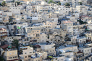 Wadi al-Joz (also Wadi Joz, Valley of the Walnuts), is an Arab neighborhood in East Jerusalem, located at the head of the Kidron Valley, north of the Old City.