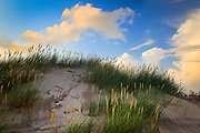 Raabjerg Mile is a migrating coastal dune between Skagen and Frederikshavn, Denmark. It is the largest moving dune in Northern Europe with an area of around 1 km² (0.4 mi²) and a height of 40 m (130 ft). The dune contains a total of 4 million m³ of sand.