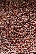 Salinas_MG, Brasil. ..Mercado Popular de Salinas, na regiao norte de Minas. Na foto bagos de feijao...Mercado Popular de Salinas, in the northern region of Minas. In this photo .beans...FOTO: LEO DRUMOND / NITRO