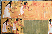 EGYPT, THEBES, WEST BANK Tomb of Sennedjem, harvesting laru
