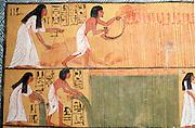 EGYPT, THEBES, WEST BANK Tomb of Sennedjem, harvesting laru