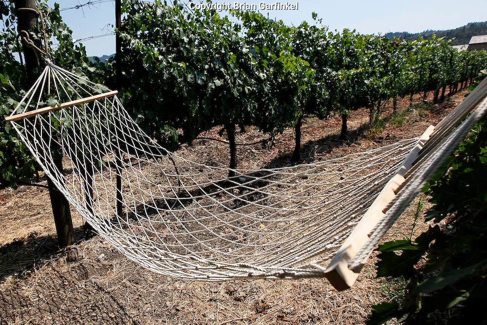A hammock in a vineyard on Sunday July 15th 2012 in Calistoga, California. (Photo By Brian Garfinkel)