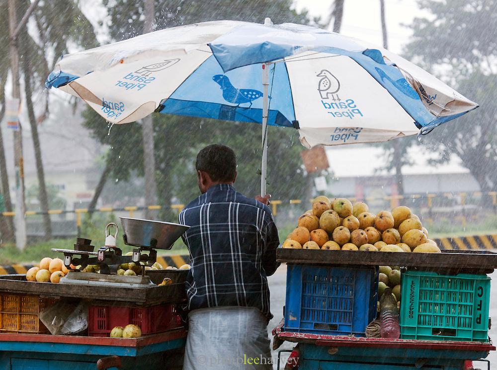 Man shelters under an umbrella during the monsoon rains, Cochin, Kerala, India.