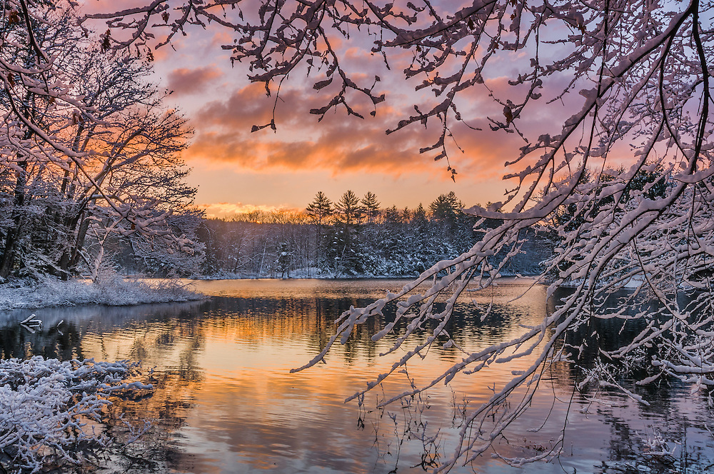 Fresh snow on branches framing view of winter sunrise over Spectacle Pond, Meredith, NH