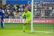 Everton goalkeeper Tim Howard shouts instructions to his team mates in the first half.<br /> Barclays Premier League match, Swansea city v Everton at the Liberty Stadium in Swansea, South Wales on Saturday 19th September 2015.<br /> pic by Phil Rees, Andrew Orchard sports photography.