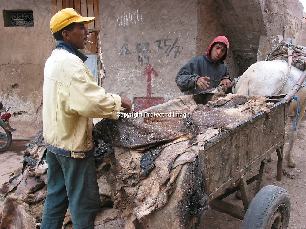 tanery in morocco