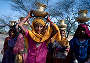 Crowd of young girls carrying water supply,  in the Jaisalmer desert