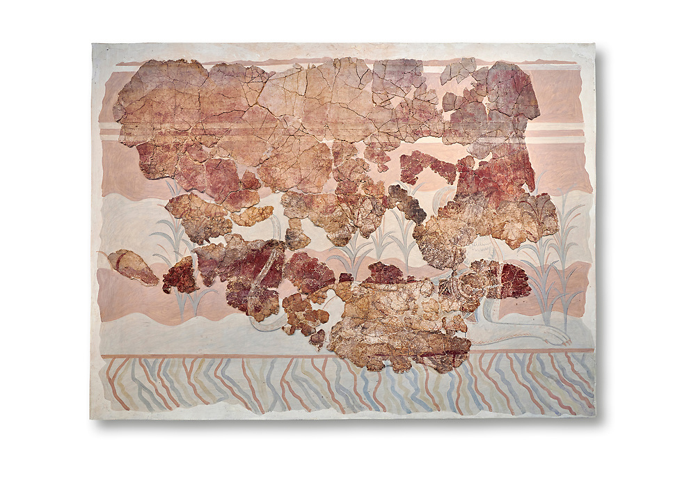 Minoan wall art fresco from the Throne Room of Knossos, 1450-1300 BC. Heraklion Archaeological Museum.  White Background. <br /> <br /> This Minoan fresco depicts griffins and palm trees .<br /> <br /> If you prefer to buy from our ALAMY PHOTO LIBRARY  Collection visit : https://www.alamy.com/portfolio/paul-williams-funkystock/minoan-art-artefacts.html . Type -   Heraklion   - into the LOWER SEARCH WITHIN GALLERY box. Refine search by adding background colour, place, museum etc<br /> <br /> Visit our MINOAN ART PHOTO COLLECTIONS for more photos to download  as wall art prints https://funkystock.photoshelter.com/gallery-collection/Ancient-Minoans-Art-Artefacts-Antiquities-Historic-Places-Pictures-Images-of/C0000ricT2SU_M9w
