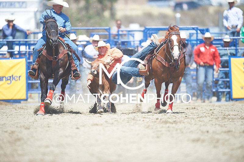 Steer wrestler Wyatt Smith of Rexburg, ID competes at the Rancho Mission Viejo Rodeo in San Juan Capistrano, CA.  <br /> <br /> <br /> UNEDITED LOW-RES PREVIEW<br /> <br /> <br /> File shown may be an unedited low resolution version used as a proof only. All prints are 100% guaranteed for quality. Sizes 8x10+ come with a version for personal social media. I am currently not selling downloads for commercial/brand use.