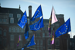 © Licensed to London News Pictures. 14/02/2019. London, UK. Campaigners fly EU and UKIP flags in Westminster, on the day that MPs are due to take part in further debates and votes on Brexit. A series of amendments are being tabled to try to change the direction of Brexit, but a vote on a deal will not be held today as was originally planned. Photo credit: Ben Cawthra/LNP