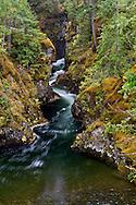 The Little Qualicum River at Little Qualicum Falls Provincial Park in the Nanaimo Regional District, British Columbia, Canada