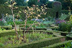 The herb garden at Ballymaloe Cookery school