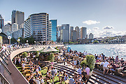 Locals Having Happy Hour at Sydney Harbour