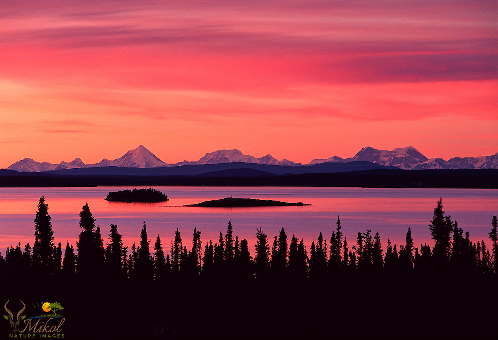 Crimson Sky relected in lake, silhouettes of spruce trees in foreground.