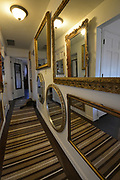 """One of her two cats is shown in this """"hallway of mirrors"""" between the bedrooms. It's a variant on the famous Hall of Mirrors in the Palace of Versailles, France. Photo taken on January 8, 2019 for """"At Home"""" feature on Sandy Stolberg, who uses dollar store finds as part of the decorations in her Belleville, IL condo.<br /> Photo by Tim Vizer"""