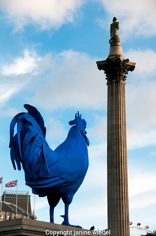 Blue Cockeral by Katharina fritsch on 4th Plinth in Trafalgar Square London