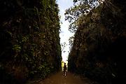 Mariana_MG, Brasil...Trecho da rota Imperial que coincide com o antigo leito da ferrovia Santa Leopoldina...Imperial route near the ancient Santa Leopoldina railway building...Foto: LEO DRUMOND / NITRO.