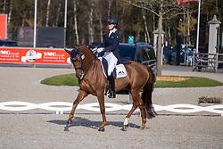 Verwimp Jorinde, BEL, Golddream Vd Kempenhoeve<br /> CDI 3* Opglabeek<br /> © Hippo Foto - Dirk Caremans<br />  24/04/2021