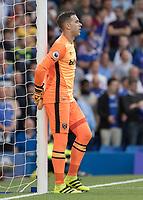 Football - 2016/2017 Premier League - Chelsea V West Ham United. <br /> <br /> Adrian of West Ham at Stamford Bridge.<br /> <br /> COLORSPORT/DANIEL BEARHAM