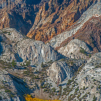 Fall colors punctuate dramatic erosion that has carved deep gullies and steep aretes and ridges on the folded, sedimentary East Face of Laurel Mountain in the eastern Sierra Nevada near Mammoth Lakes.