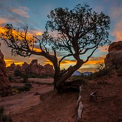 USA - Arches National Park