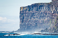 Latrabjarg bird cliffs, Bjargtangar, Iceland
