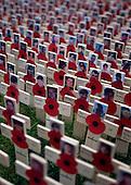 2012_11_08_Field_remembrance_SSI