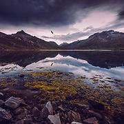 www.aziznasutiphotography.com  captured close to Vatterfjordpollen