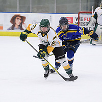 3rd year defence man Tamara McVannel (23) of the Regina Cougars in action during the Women's Hockey home game on February 9 at Co-operators arena. Credit: Arthur Ward/Arthur Images