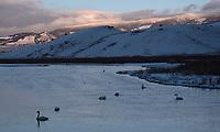 Flat Creek, National Elk Refuge, Wyoming.