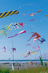 North America, USA, Washington, Long Beach. Kites spinning, Washington State Kite Festival