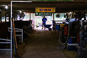 21 JULY 2020 - COLFAX, IOWA: A man cleans out a stall in the cattle barn at the Jasper County Fair in Colfax, about 30 miles east of Des Moines. Summer is county fair season in Iowa. Most of Iowa's 99 counties host their county fairs before the Iowa State Fair. In 2020, because of the COVID-19 (Coronavirus) pandemic, many county fairs were cancelled, or scaled back to concentrate on 4H livestock judging. The Iowa State Fair was cancelled completely. The Jasper County Fair cancelled most events and focused on just the 4H contests. Tuesday were the swine contests.            PHOTO BY JACK KURTZ