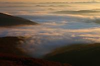 Sunrise in Bieszczady National Park, view from Polonina Carynska, Poland