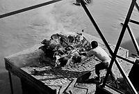 """Benares (Varanasi) Indie, 10.1997.   Najbardziej znane na swiecie indyjskie miasto-1,5 mln mieszkancow. Jest najwazniejszym miejscem pielgrzymkowym w Indiach i zarazem najwieksza atrakcja turystyczna kraju. Miasto lezy nad Gangesem (Ganga) swieta rzeka hinduizmu. Kazdy wyznawca hiduizmu przynajmniej raz w zyciu pownien obmyc cialo w wodach Gangesu w Benares, stad mozna powiedziec, ze jest to najwazniejsze miasto dla wyznawcow hinduizmu *** Varanasi, also known as Benares, is a city on the banks of the river Ganges in Uttar Pradesh, India. In the sacred geography of India Varanasi is known as the """"microcosm of India"""". Varanasi is considered as the religious capital of Hinduism *** N/z kremacja zwlok nad brzegiem Gangesu fot Michal Kosc / AGENCJA WSCHOD"""