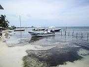 Fishing boats, Caye Caulker, Belize