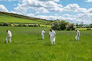 Village Cricket, Northumberland