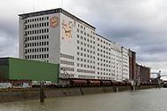 Europe, Germany, Cologne, the Ellmill or Aurora mill at the Rhine harbor in the district Deutz.<br /> <br /> Europa, Deutschland, Koeln, die Ellmuehle oder Aurora Muehle im Deutzer Hafen.