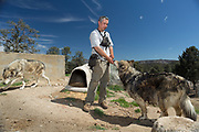 Iraq and Afghanistan army veteran Jonathon Acuna pets Cinny who was formerly kept in a beauty salon as a pup and shown off its customers as a wolf, as Huey skulks in the background. Huey was found wandering the streets of Houston, Texas as a 2 month old pup and was picked up by a local rescue group. Lockwood Animal Rescue Center, California.