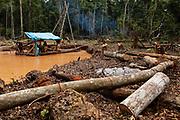 Los mineros talan árboles para despejar el area e inundar agujeros para extraer el oro de la tierra con una máquina en Boca Colorado, Perú.