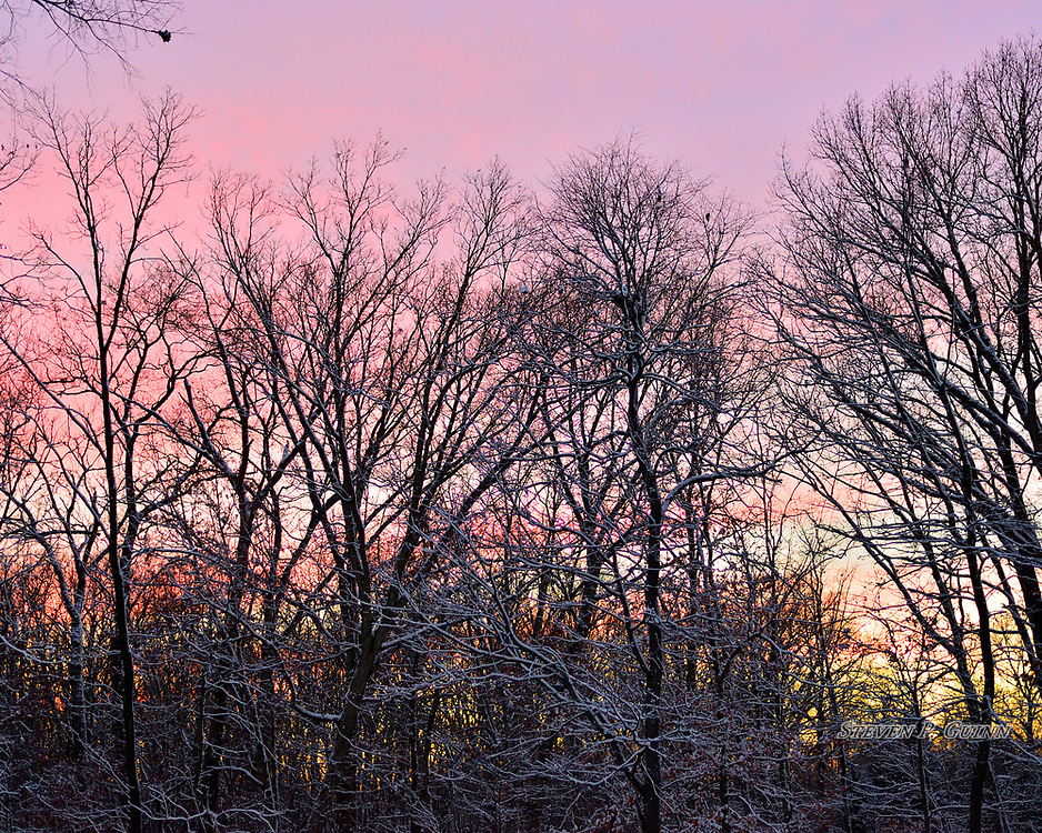 """I captured this nature portrait in my backyard on February 8th, 2017. On this evening, I saw this sunset through my kitchen window and decided to grab my camera, go outside, and photograph it. The multiple, vivid colors in the sky is what drew me to this scene the most. I also wanted to capture the snow that stuck to the tree branches because it adds outlines that resemble """"fractures"""" in the scene. I also like the treetops because they create distinctive lines with varying patterns that contrast with the bright sky in the background.<br /> <br /> Printed on Hahnemühle German Etching paper. Limited to 150 productions per size.<br /> <br /> Framed prints are available in 20"""" x 16"""", 30"""" x 24"""", 40"""" x 30"""", and 50"""" x 40"""" sizes."""