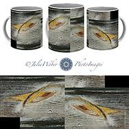 Coffee Mug Showcase 43 - Shop here: https://2-julie-weber.pixels.com/products/local-galaxy-julie-weber-coffee-mug.html